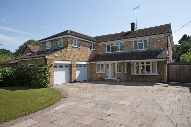 Thumbnail Detached house for sale in Hullbridge Road, Rayleigh, Rayleigh