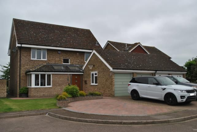 Thumbnail Detached house for sale in Kittiwake Close, Biggleswade, Bedfordshire