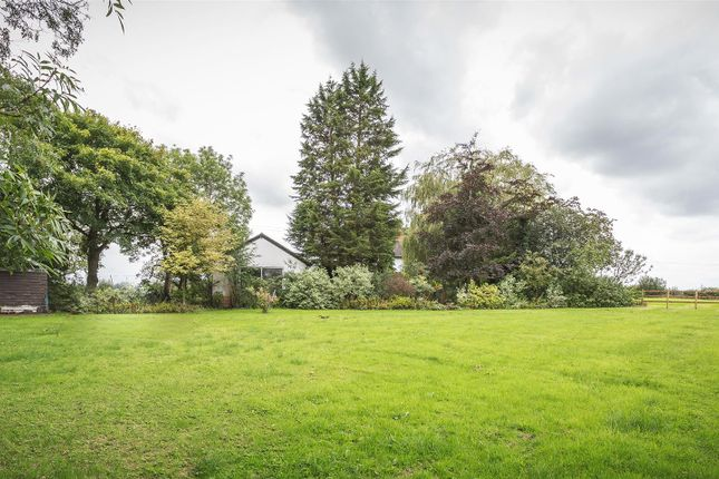 Paddock of White Cottage, Kirk Langley, Ashbourne DE6