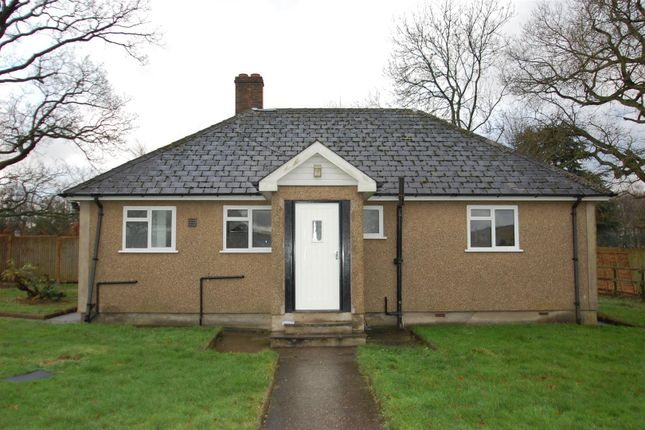 Thumbnail Detached bungalow to rent in Tylers Causeway, Newgate Street, Hertford