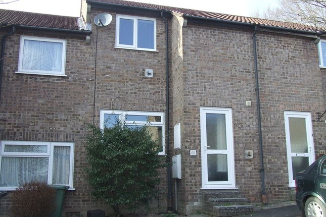 Thumbnail Terraced house to rent in Barton Road, Barnstaple