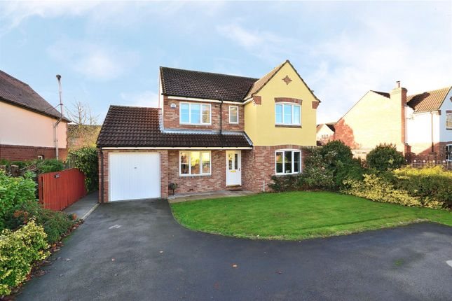 Thumbnail Detached house for sale in York Road, Green Hammerton, York