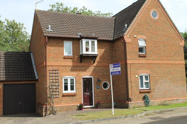 Thumbnail Property to rent in Ockley Court, Burpham, Guildford
