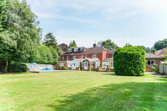 Thumbnail Detached house to rent in Pelhams Walk, Esher