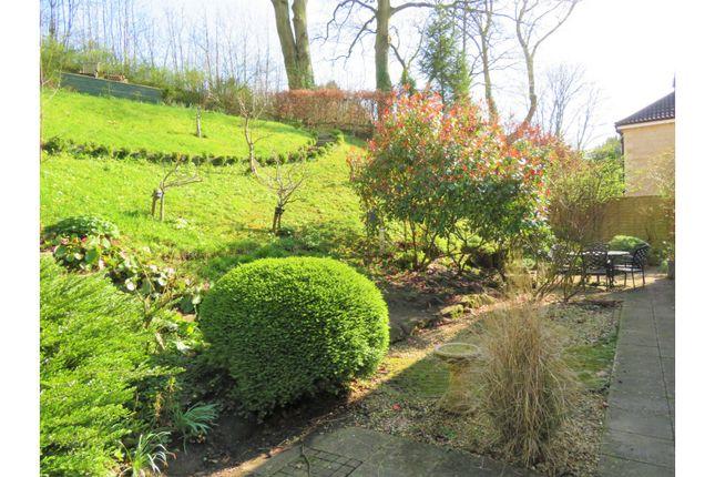 Garden of Wellesley Green, Bruton BA10