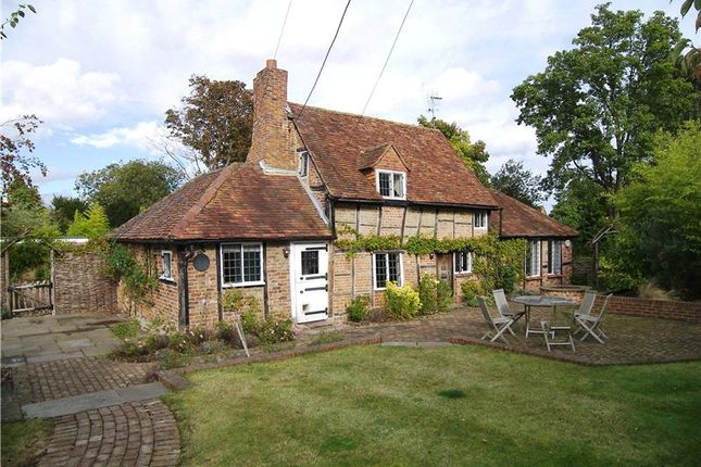 Thumbnail Detached house to rent in Waltham Road, Ruscombe, Berkshire