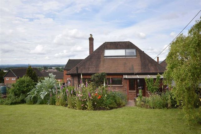 Thumbnail Detached bungalow to rent in Homend Crescent, Ledbury, Herefordshire