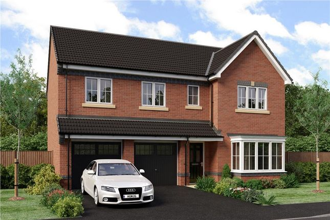 "Thumbnail Detached house for sale in ""Buttermere"" at Joe Lane, Catterall, Preston"