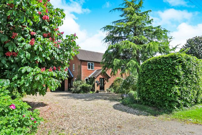 Thumbnail Detached house for sale in The Street, North Lopham, Diss