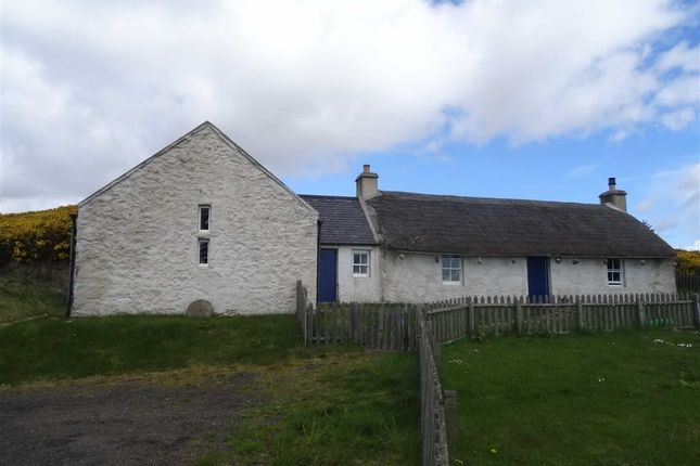 Thumbnail Cottage for sale in Gartymore, Helmsdale, Sutherland