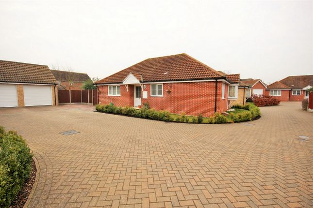 Thumbnail Detached bungalow for sale in Mulberry Gardens, Langenhoe, Colchester, Essex