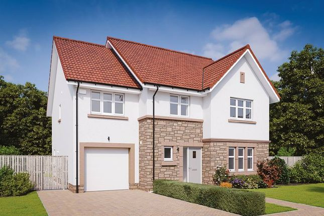 "Thumbnail Detached house for sale in ""The Darroch"" at Kelvinvale, Kirkintilloch, Glasgow"