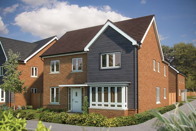 """Thumbnail Detached house for sale in """"The Maple"""" at Mcnamara Street, Longhedge, Salisbury"""