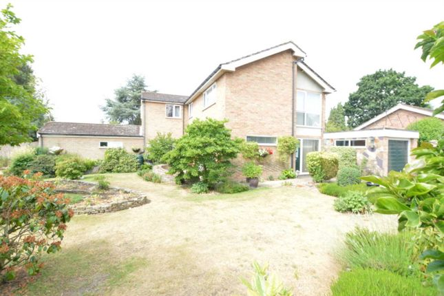 Thumbnail Detached house for sale in Mead Close, Buxton, Norwich