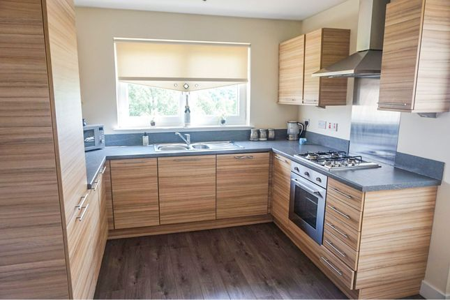 Thumbnail Detached house for sale in Baxter Brae, Cleland