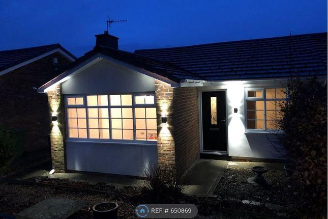 2 bed bungalow to rent in Newbank Walk, Blaydon-On-Tyne NE21