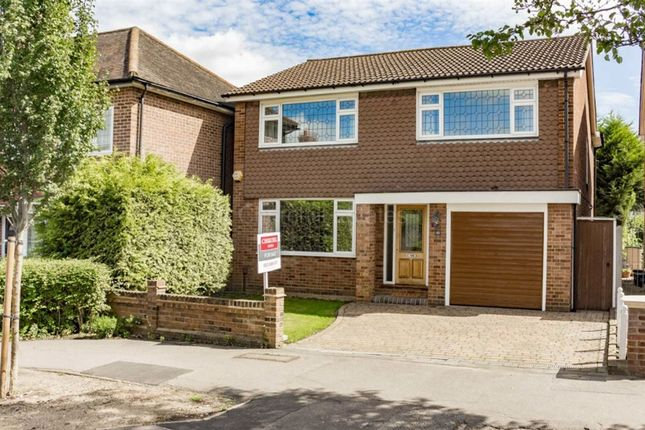 Thumbnail Detached house for sale in Limes Avenue, Wanstead, London