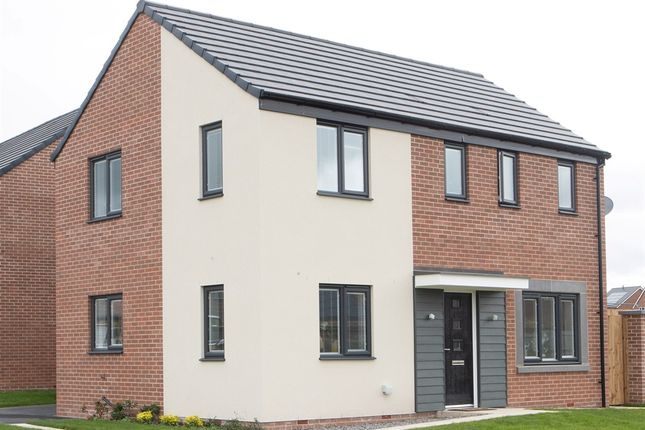 "Thumbnail Detached house for sale in ""Clandon +"" at Heyford Avenue, Buckshaw Village, Chorley"
