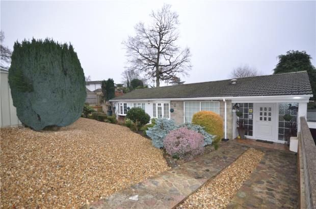 Thumbnail Detached bungalow for sale in Alphington Avenue, Frimley, Camberley