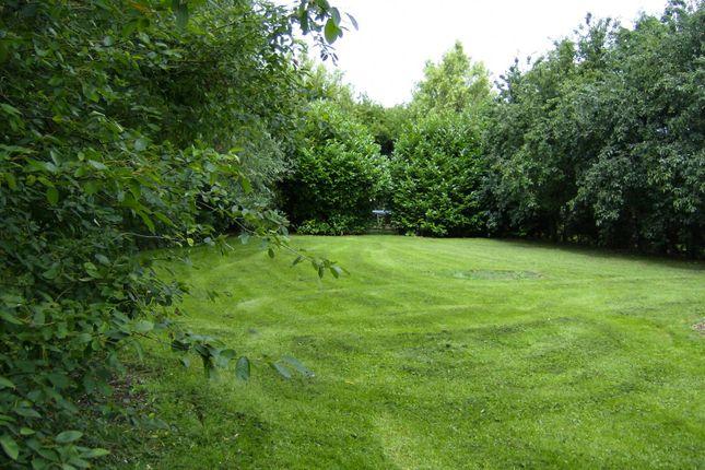 Garden of Broadgate, Spalding PE12