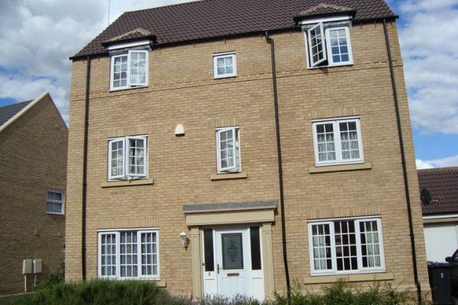 Thumbnail Detached house to rent in Baldwin Drive, Peterborough