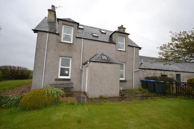 Thumbnail Detached house to rent in Scone, Perth