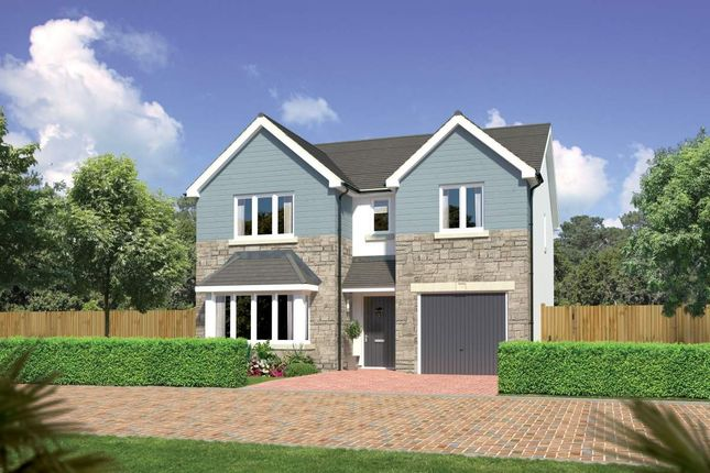 "Thumbnail Detached house for sale in ""Hampsfield"" at Beech Path, East Calder, Livingston"