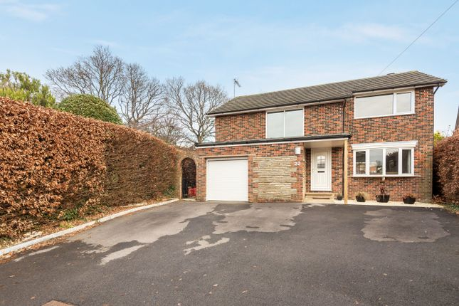 Thumbnail Detached house for sale in Buckmore Avenue, Petersfield