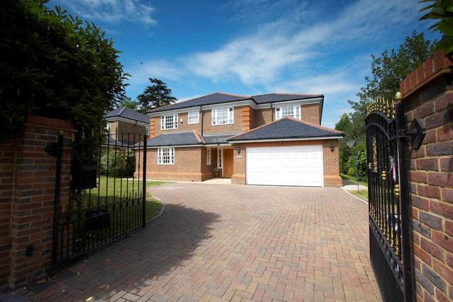Thumbnail Detached house to rent in Ellesmere Road, Weybridge