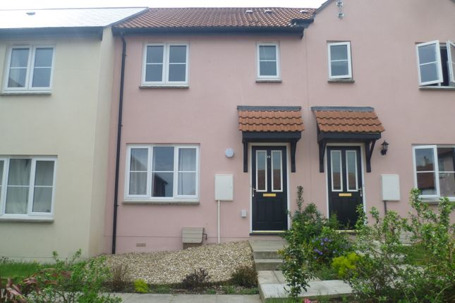 Thumbnail Terraced house to rent in Flax Meadow Lane, Axminster