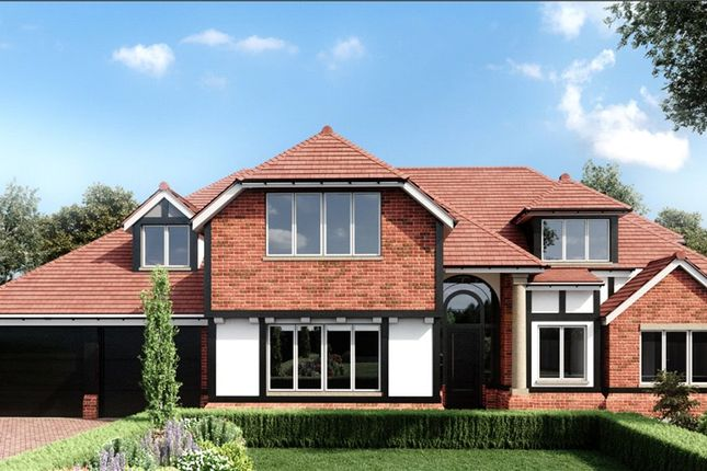 Thumbnail Detached house for sale in Hazel Way, Chipstead