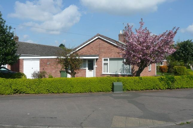 Thumbnail Bungalow to rent in Wilfred Gardens, Ashby De La Zouch, Leicestershire