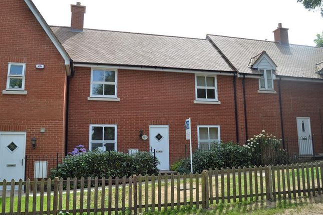 Thumbnail Terraced house for sale in Waterside Lane, Colchester