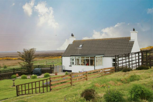 Thumbnail Detached house for sale in Bluebell Cottage, Freswick, Wick, Highland