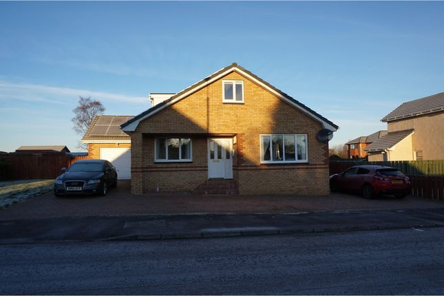 Thumbnail Detached house to rent in Wallace Wynd, Carluke