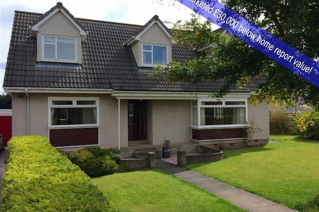 Thumbnail Detached house for sale in 4, Murray Row, Balmullo, Fife