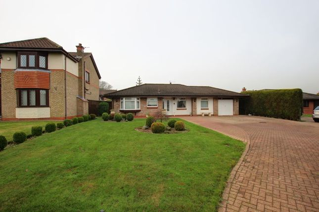 Thumbnail Bungalow for sale in Whitworth Meadow, Spennymoor