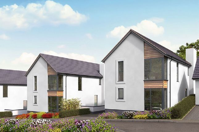 Thumbnail Detached house for sale in Moorview Lane, Marldon, Devon