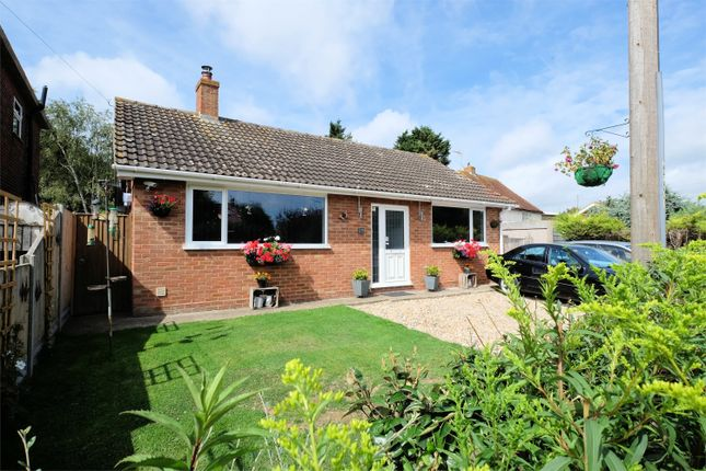 Thumbnail Detached bungalow for sale in South Street, Whitstable, Kent
