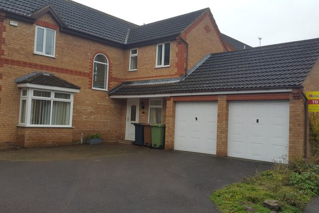 Thumbnail Detached house to rent in Jersey Close, Wellingborough