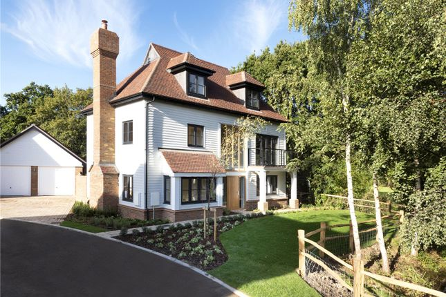 Thumbnail Detached house for sale in Cherry Tree Lane, Cranleigh Road, Ewhurst, Surrey