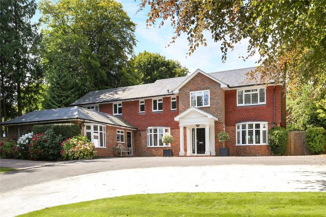 Thumbnail Detached house for sale in Square Drive, Haslemere, Surrey