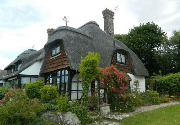 Thumbnail Cottage to rent in Pinewoods, Bexhill-On-Sea, East Sussex