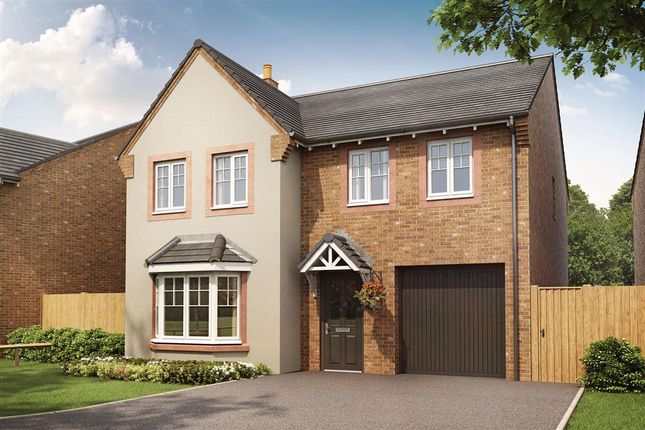 "Thumbnail Detached house for sale in ""The Haddenham - Plot 83"" at Rufus Road, Carlisle"