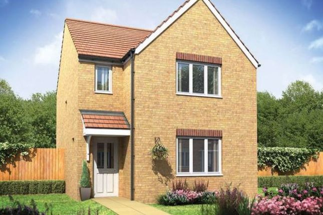 Thumbnail Semi-detached house for sale in The Hatfield, Bedale Meadows, Bedale