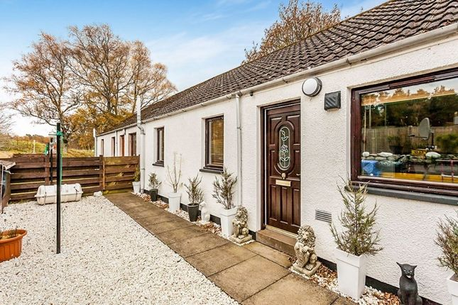 Thumbnail Bungalow for sale in Rowan Cottages, Tarfside, Brechin