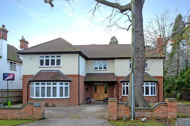 Thumbnail Detached house to rent in Blackdown Avenue, Pyrford