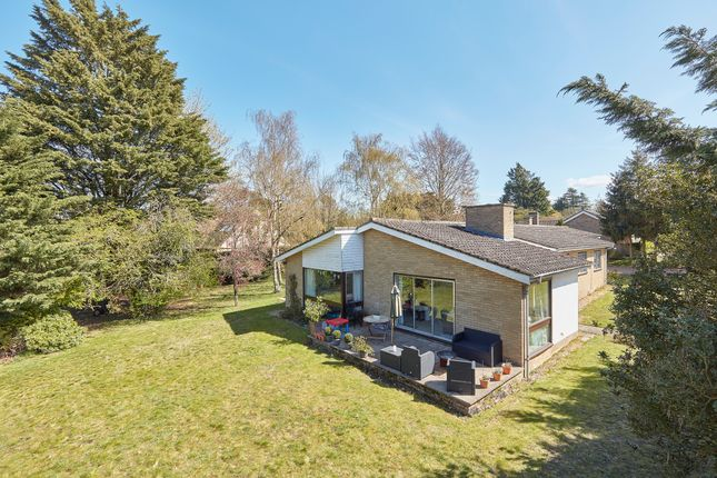 Thumbnail Detached bungalow for sale in Woodditton Road, Newmarket