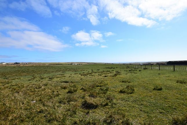 Land for sale in Occumster, Lybster