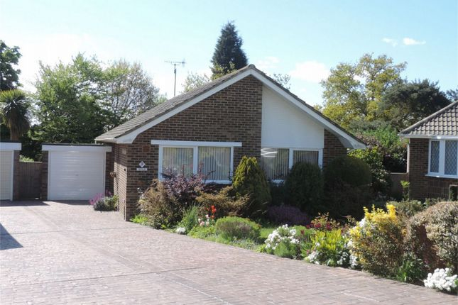 Thumbnail Detached bungalow for sale in Beech Close, Bexhill On Sea, East Sussex